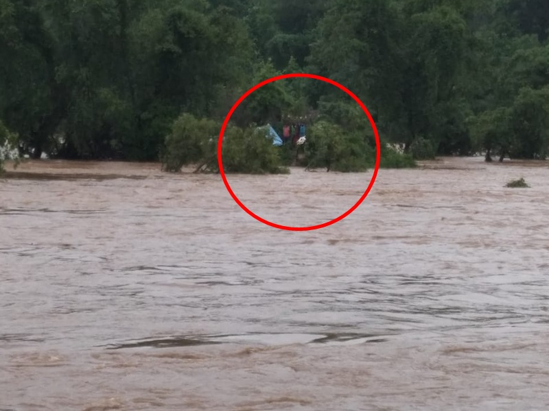 VIDEO : उफनती नदी के बीच पेड़ पर चढ़कर 6 लोगों ने 48 घंटे किया मौत से संघर्ष, सकुशल बाहर निकाला