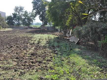 Dhuniwale Dadaji: आधुनिक पार्क के फूलों से महकेगी श्रीदादाजी की समाधि
