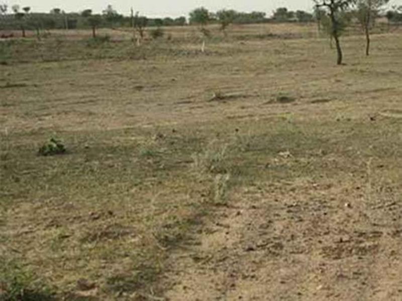 पट्टे की जमीन को फ्री-होल्ड करना बंद किया तो सरकार को लगी ढाई सौ करोड़ की चपत