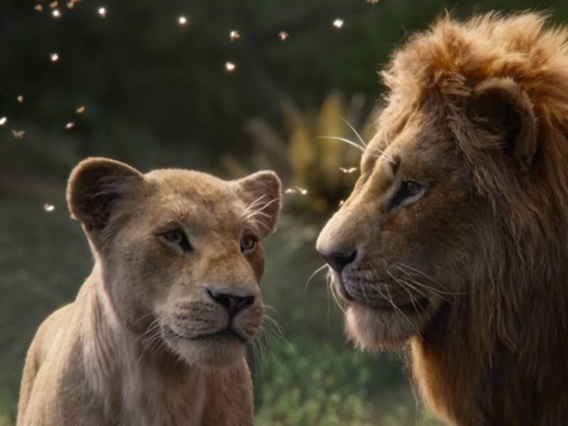 The Lion King Box Office : कमाई पहुंची 150 करोड़ पार, वीकेंड पर उमड़ी भीड़