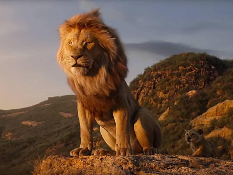 The Lion King Box Office : पहले हफ्ते में ही 80 करोड़ पार निकल गई यह विदेशी फिल्म