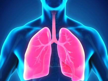 वायु प्रदूषण के कारण हो रही सबसे ज्यादा फेफड़े खराब होने की बीमारी