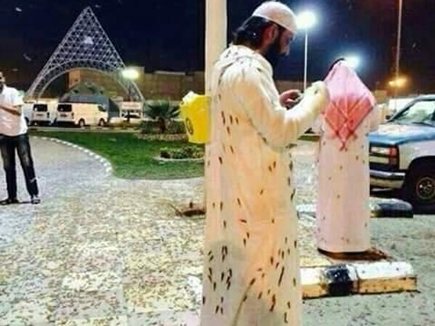 मक्का की प्रसिद्ध मस्जिद में टिड्डों का हमला, देखिए तस्वीरें