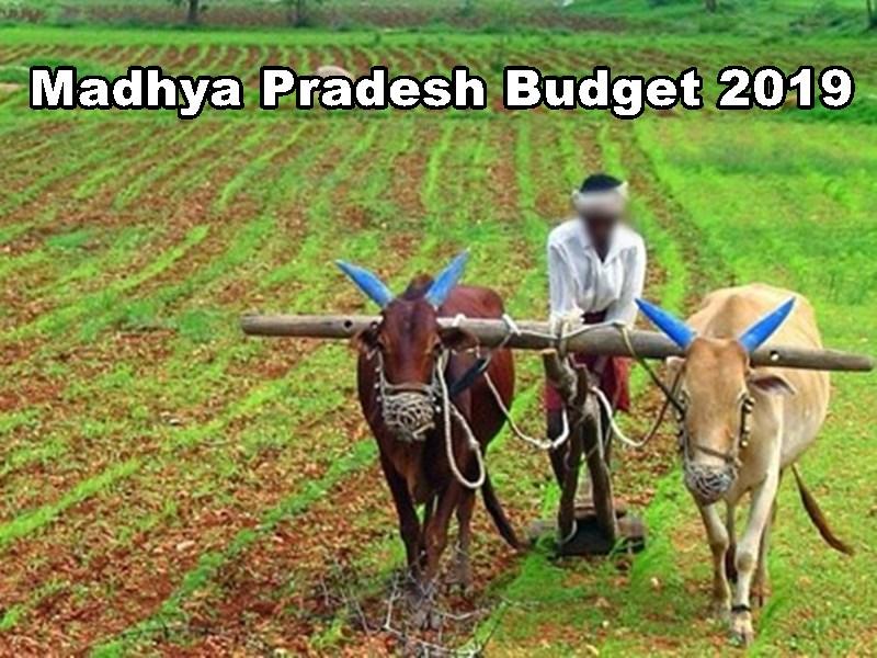 Madhya Pradesh Budget 2019 for Farmers : किसानों के लिए कृषक बंधु योजना, उन्नत खेती के लिए देंगे ट्रेनिंग