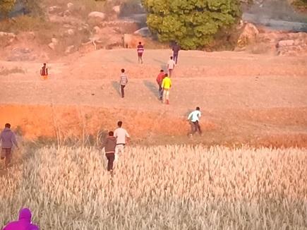 मैनपाट में फिर घुसा हाथियों का दल, ग्रामीणों ऐसे जंगल की ओर खदेड़ा