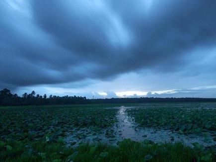 आषाढ़ में सावन जैसी झड़ी, छत्तीसगढ़ के इन जिलों में भारी बारिश की चेतावनी