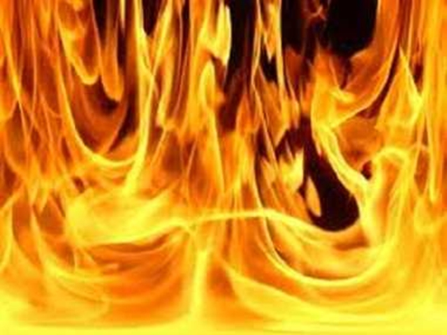 Morena : शराब के पैसे और बंटवारा नहीं किया तो बेटे ने मां को जिंदा जलाया, मौत