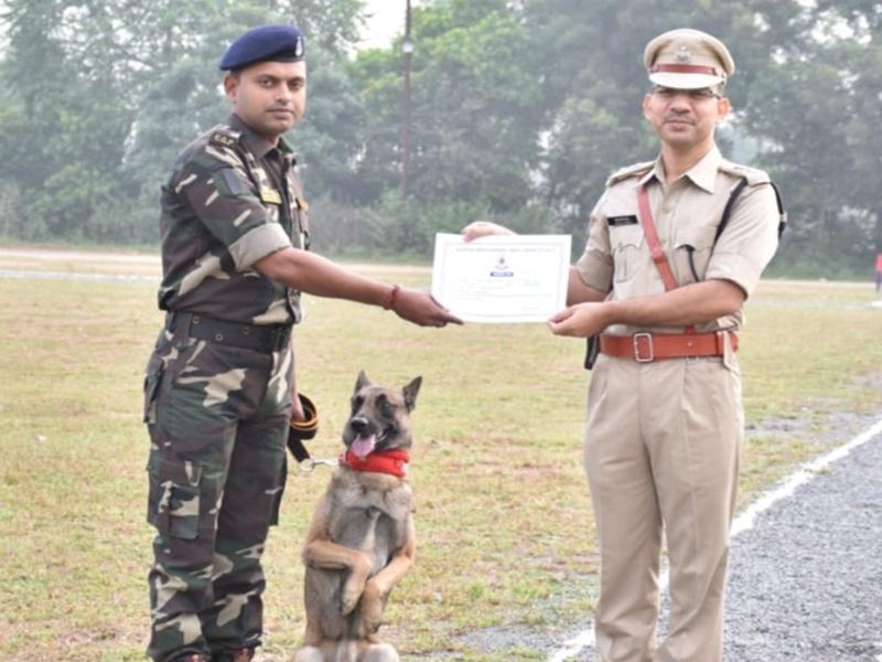 खोजी डॉग 'बाघा' ने किया ऐसा काम, SP ने खुश होकर दिया इनाम, देखें वीडियो