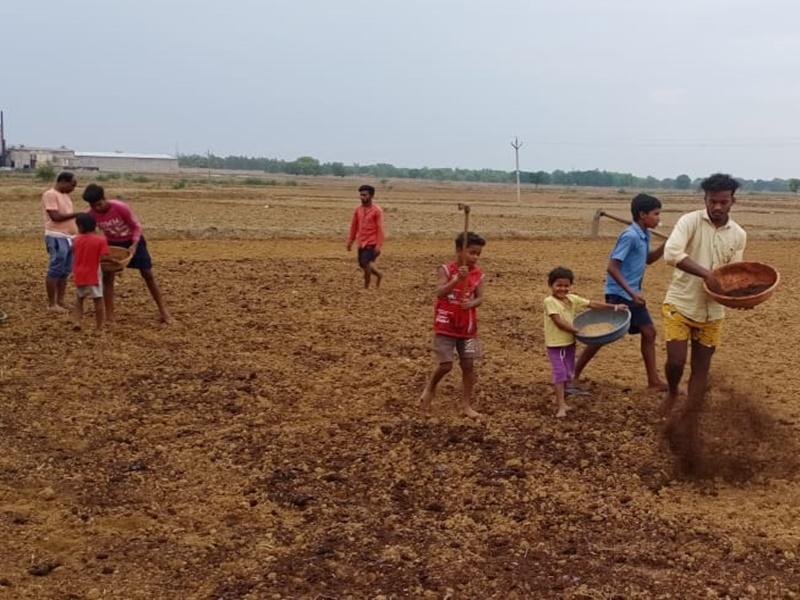 मानसून की आहट के साथ खेती के मोर्चे पर उतरा अन्नदाता का पूरा परिवार