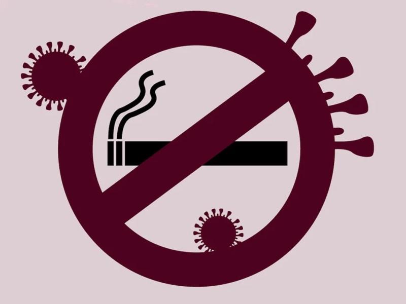CoronaVirus Effect: WHO ने चेताया, धूम्रपान से कोरोना संक्रमण में बड़ा खतरा