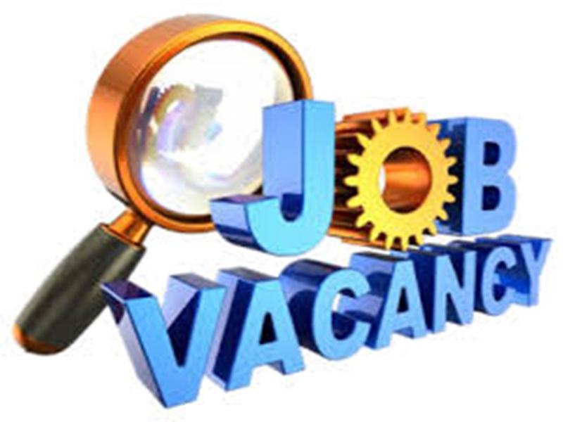 Chhattisgarh Job News: 66 पदों पर सहायक प्राध्यापकों की भर्ती शुरू, ऐसी होगी पूरी प्रक्रिया