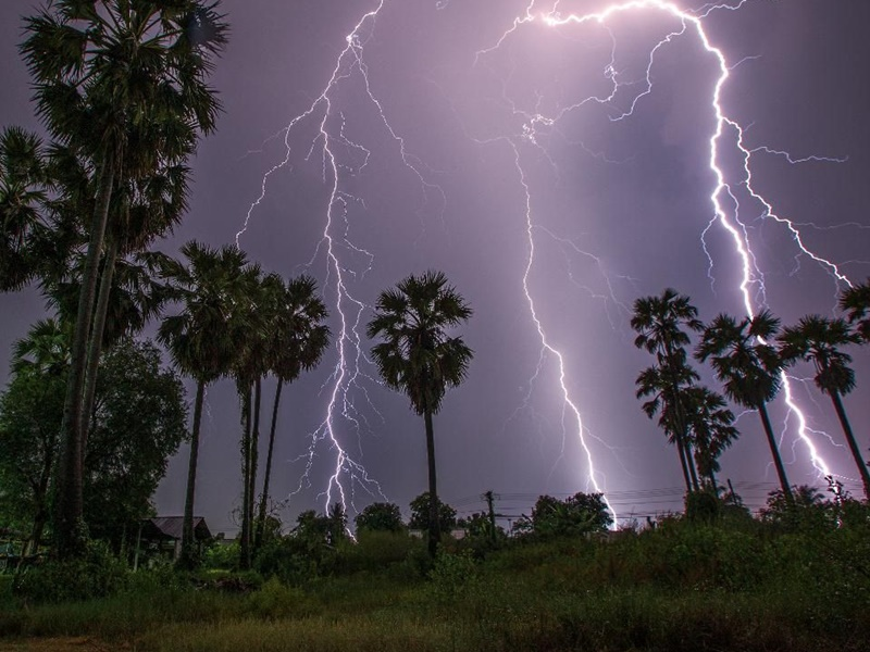 Weather Update: 30 killed due to lightning in Bihar heavy rain ...