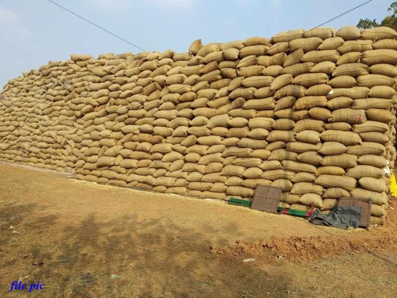 Chhattisgarh : समर्थन मूल्य पर धान खरीदी की तारीख बढ़ी, दलालों पर सख्त नजर