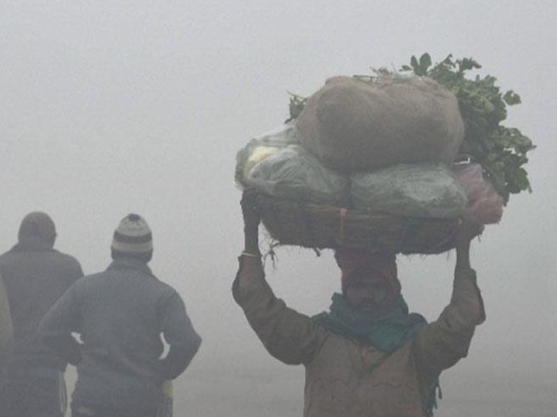 Madhya Pradesh Weather Update : ग्वालियर में पारा 6.8 डिग्री पर, तीन दिन बाद ठंड में और इजाफा हो सकता है