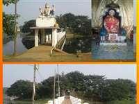 Ram Mandir Bhoomi Pujan : भांजे श्रीराम के भव्य मंदिर के भूमिपूजन पर ननिहालवासी उल्लासित