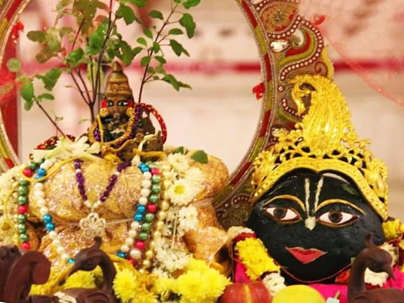 Tulsi Vivah 2019: शालिग्राम संग लेती है तुलसी सात फेरे, जानिए विधि और शुभ मुहूर्त