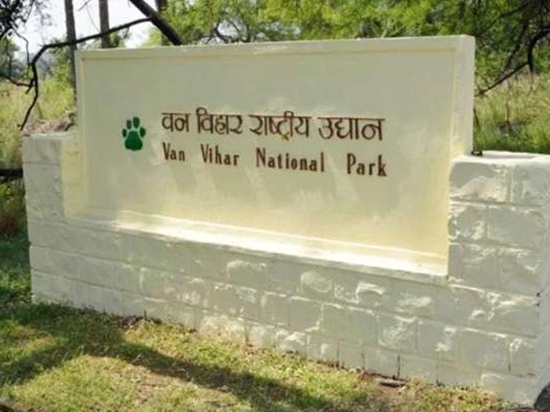 Coronavirus in Bhopal : भोपाल के वन विहार में पशुओं को कोरोना से बचाने के लिए निगरानी शुरू