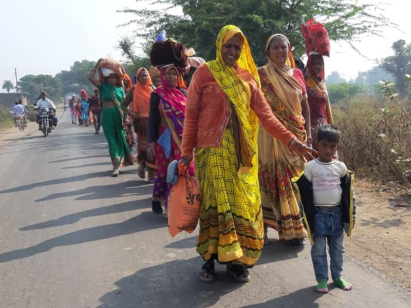 Narmada Parikrama : डूब के चलते पहली बार बड़वानी जिले में बदले पथ से शुरू हुई नर्मदा परिक्रमा