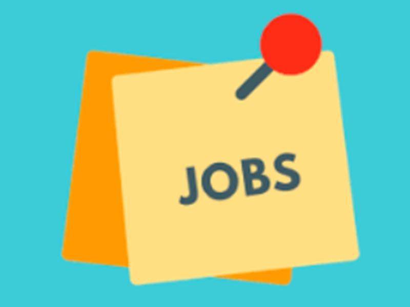 Jobs vacancy : इंस्पेक्टर की पोस्ट के लिए यहां निकली है वैकेंसी, यह है आवेदन की आखिरी तारीख