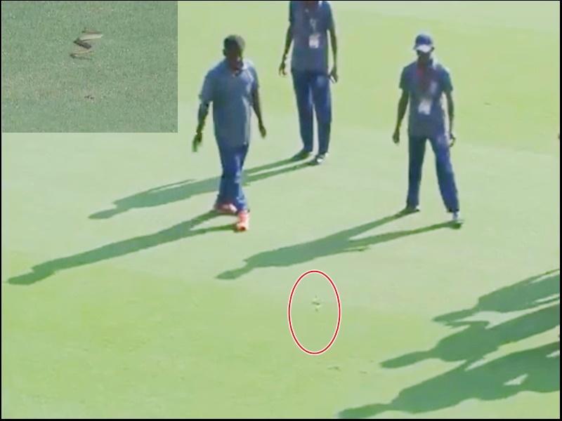 Ranji Trophy Cricket: मैच के दौरान मैदान में घुसा लंबा सांप, खिलाड़ी भागते दिखे इधर-उधर, देखिए Video