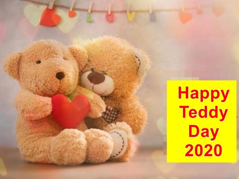 Happy Teddy Day 2020: टेडी बियर का हर रंग कुछ कहता है, जानिए इसके बारे में