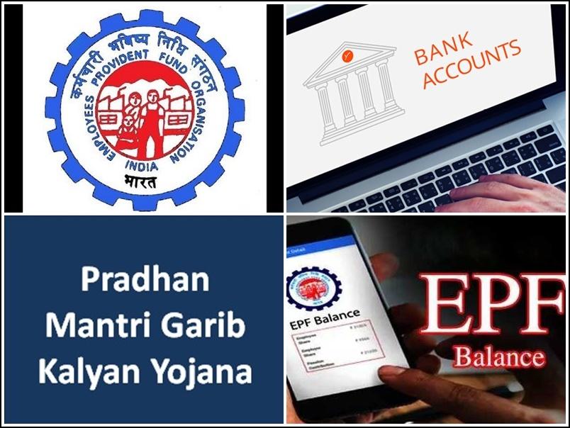 EPFO, ESIC ने जारी की हैं PKGKY, UAN, PF, Bank Account संबंधी ये जरूरी सूचनाएं, अपनी स्टेटस चेक करें