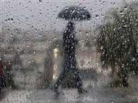 Chhattisgarh Weather Update : छत्तीसगढ़ के बिलासपुर में सबसे ज्यादा, तो बस्तर में सबसे कम हुई बारिश