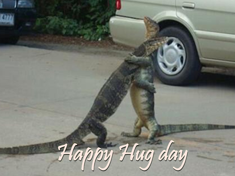 Hug Day 2020: कुछ इस अंदाज में भी Singles मन रहे Hug Day, वायरल हो रही यह Funny तस्वीरें और ट्वीट्स