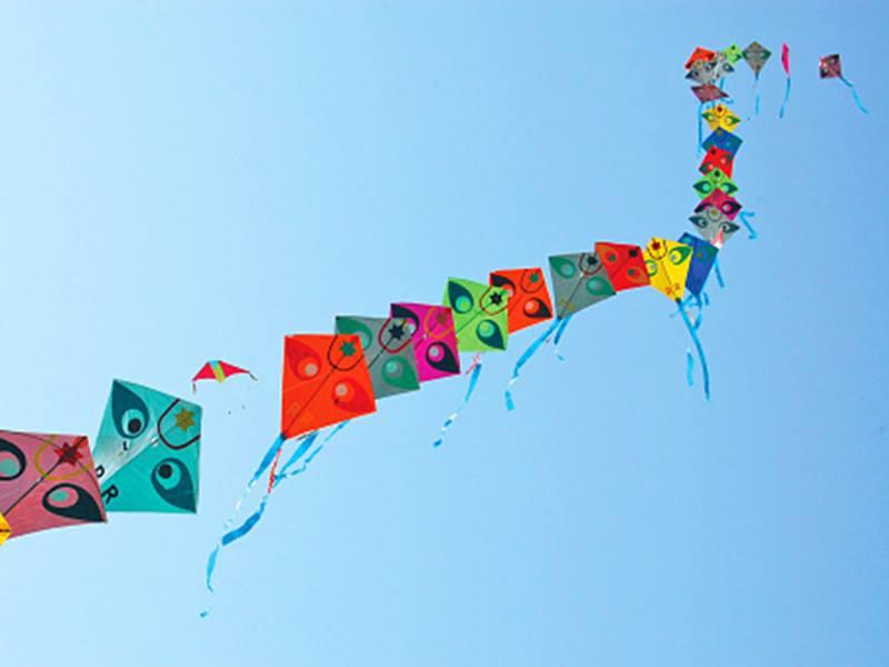 Happy Makar Sankranti 2020: मकर संक्रांति के दिन राशि अनुसार करें यह काम