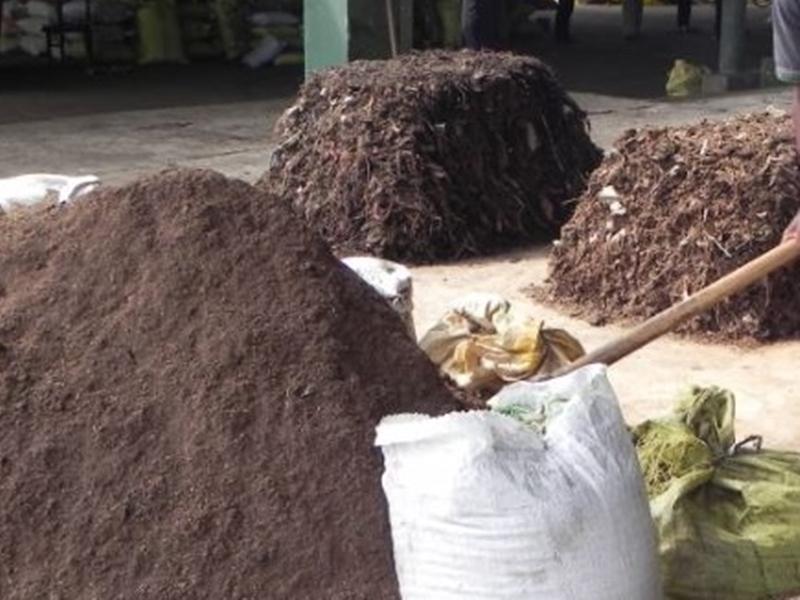 Gwalior News : केदारपुर प्लांट पहुंचे निगमायुक्त,कचरे से बन रही थी खाद