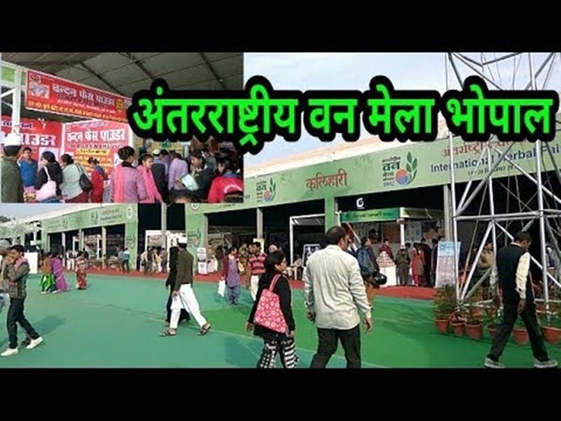International Vindhya Herbal Fair : वन मेला 18 से 22 तक, कवि सम्मेलन-लॉफ्टर शो होगा