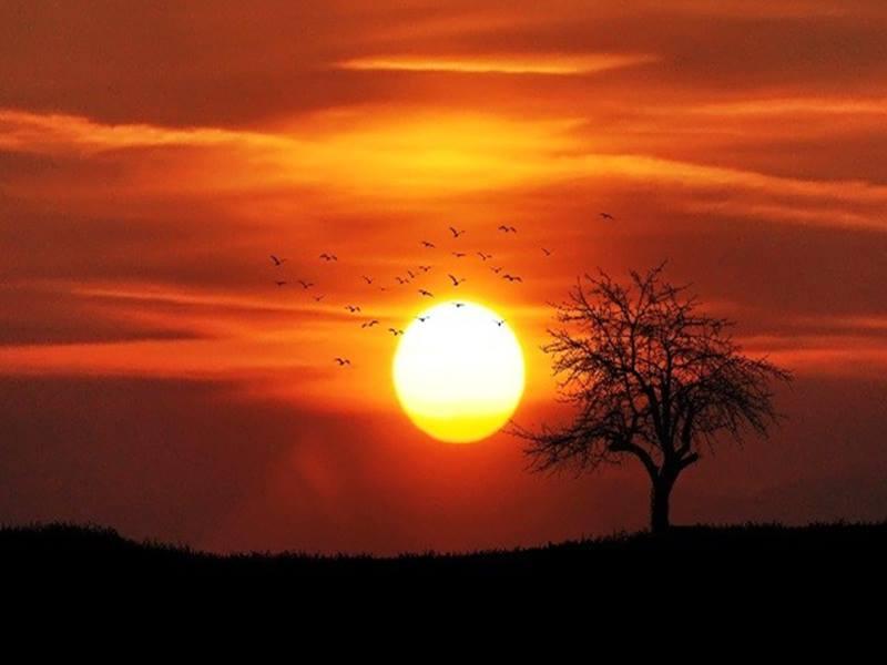 Surya Grahan 2019:  सूर्य ग्रहण में बच्चे और गर्भवती महिलाएं रहे सावधान, बरतें यह सावधानियां