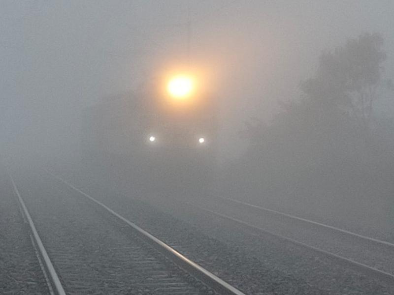 Madhya Pradesh Weather Update : ठंडी हवाओं ने ठिठुराया, कहीं हल्की बारिश, तो कहीं छाया रहा कोहरा