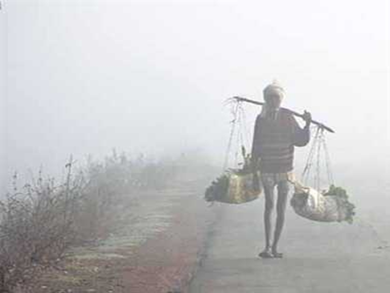 Chhattisgarh Weather Update : दिन भर रुक-रुक कर बारिश, शीत लहर से ठिठुरे लोग