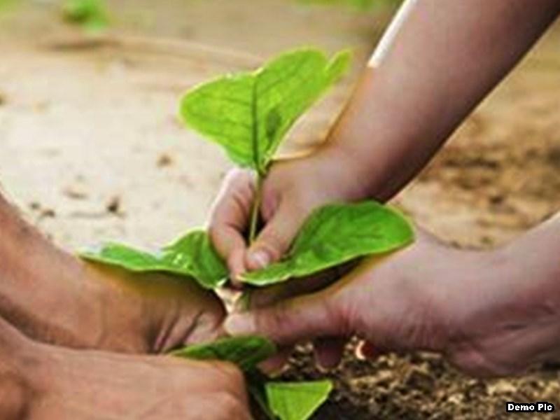 Chhattisgarh : बस्तर में खुलेगा विश्व का पहला वैश्विक प्रकृति पर्यावरण विश्वविद्यालय