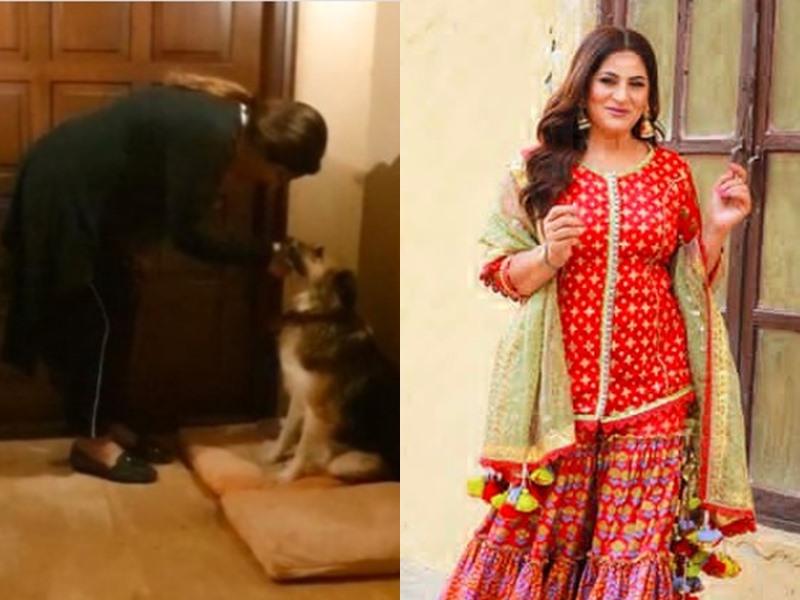 कुत्ते को घर से बाहर रहता देख Archana Puran Singh पर भड़के लोग, एक्ट्रेस को देना पड़े सबूत