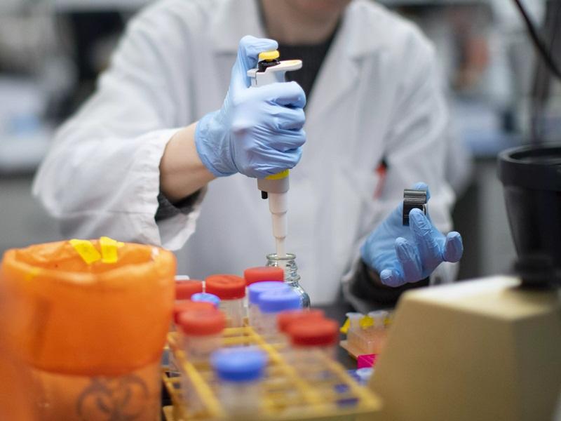 Korba Coronavirus Update : कोरोना टेस्ट के लिए अब रायपुर नहीं भेजे जाएंगे सैंपल