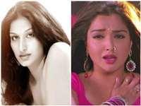 खूब पसंद की जाती हैं ये 4 Bhojpuri Actresses, चौथी ने तो की हैं 500 से ज्यादा फिल्में