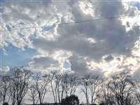 Madhya Pradesh Weather Update : मध्य प्रदेश के कई इलाकों में तापमान 10 डिग्री से कम, बैतूल में रहा 7.2 डिग्री