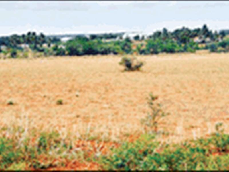 Land Record Missing : मध्य प्रदेश में 42 लाख हेक्टेयर जमीन सरकारी रिकॉर्ड से गायब