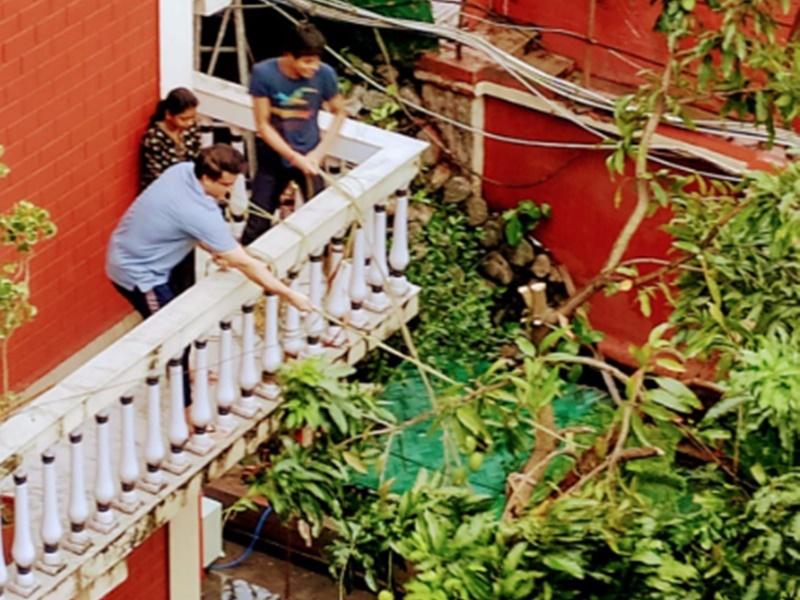 Cyclone Amphan में Sourav Ganguly के घर में गिरा आम का पेड़, 'दादा' ने दिया सहारा