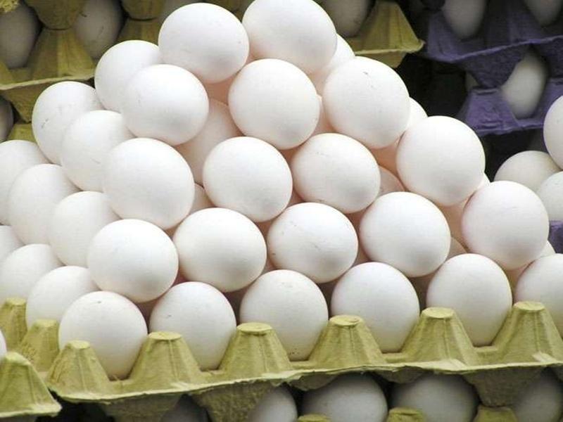 Chhattisgarh Market: लुढ़कते अंडे को घरेलू मांग ने संभाला, 40 फीसद घटा उत्पादन, 20 फीसद गिरे दाम