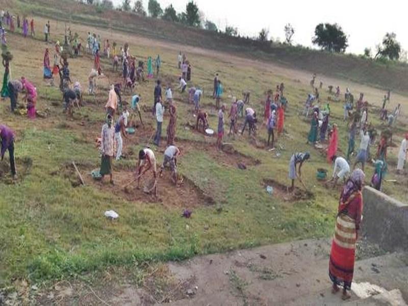 MNREGA से श्रमिकों को रोजगार देने में गड़बड़ी, तकनीकी सहायक बर्खास्त