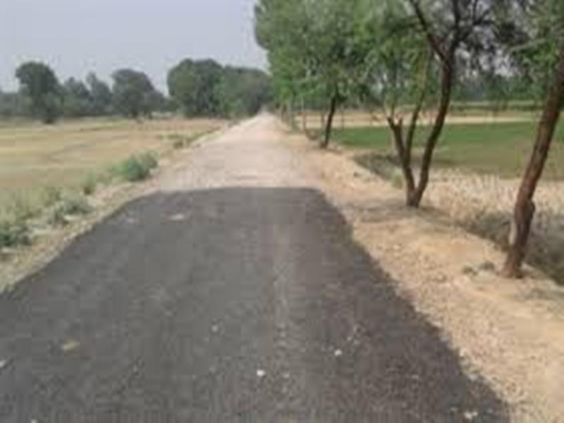 Madhya Pradesh News :  रोजगार के रास्ते खोलने के लिए गांवों में बनेंगी सुदूर और खेत सड़क