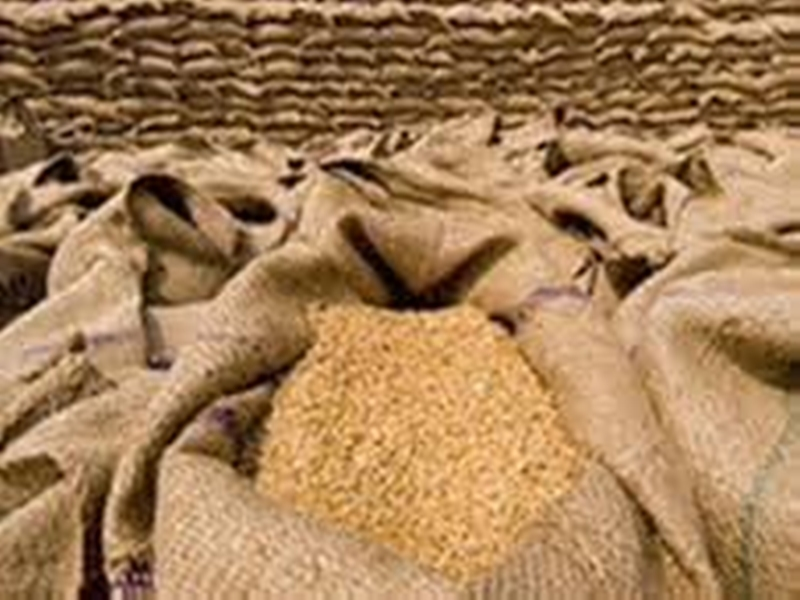 Gehu Kharidi in MP : किसानों से 31 मई तक खरीदा जाएगा गेहूं, भेजे जाएंगे एसएमएस