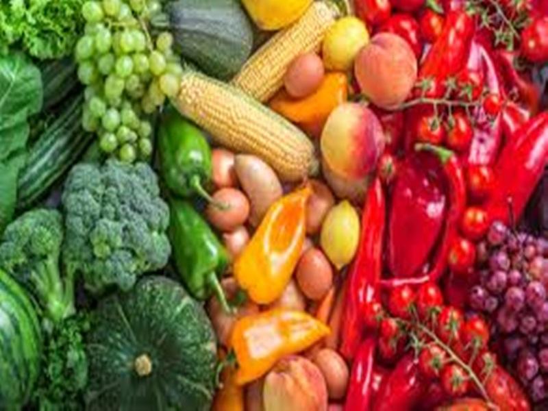 Vegetable Farmer : सब्जी किसानों का संकट  दूर करने में जुटी सरकार