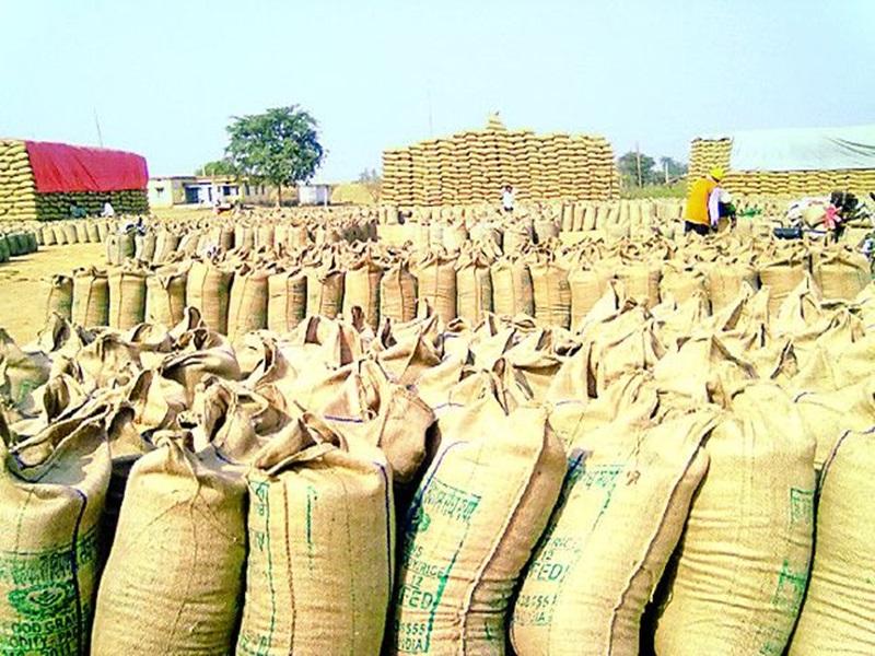 Bilaspur Paddy Farmer : फांसी का फंदा लेकर कलेक्टोरेट पहुंचे किसान, सरकार के खिलाफ फूटा गुस्सा