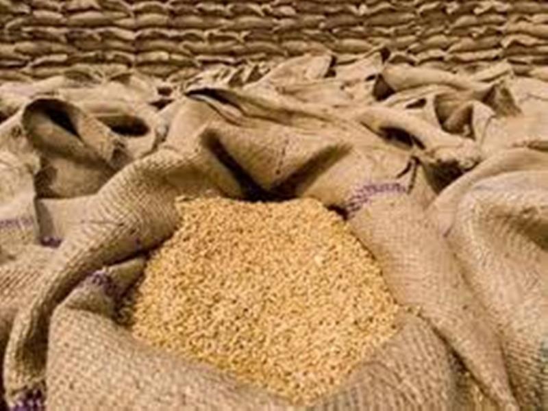 मध्य प्रदेश में गेहूं बेचने के लिए अब दो मार्च तक कराया जा सकता है पंजीयन