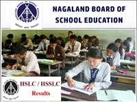 Nagaland Board, NBSE 10th, 12th Result 2020: 10वीं, 12वीं बोर्ड परीक्षा के रिजल्ट घोषित