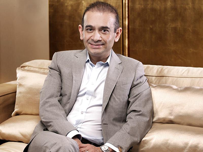 PNB को 7200 करोड़ रुपये लौटाए नीरव मोदी : DRT